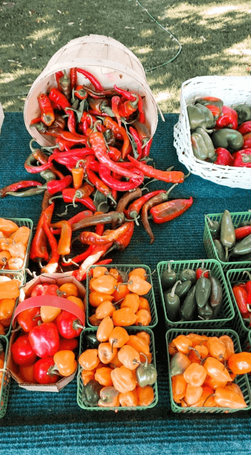 niagara on the lake - farmers' market