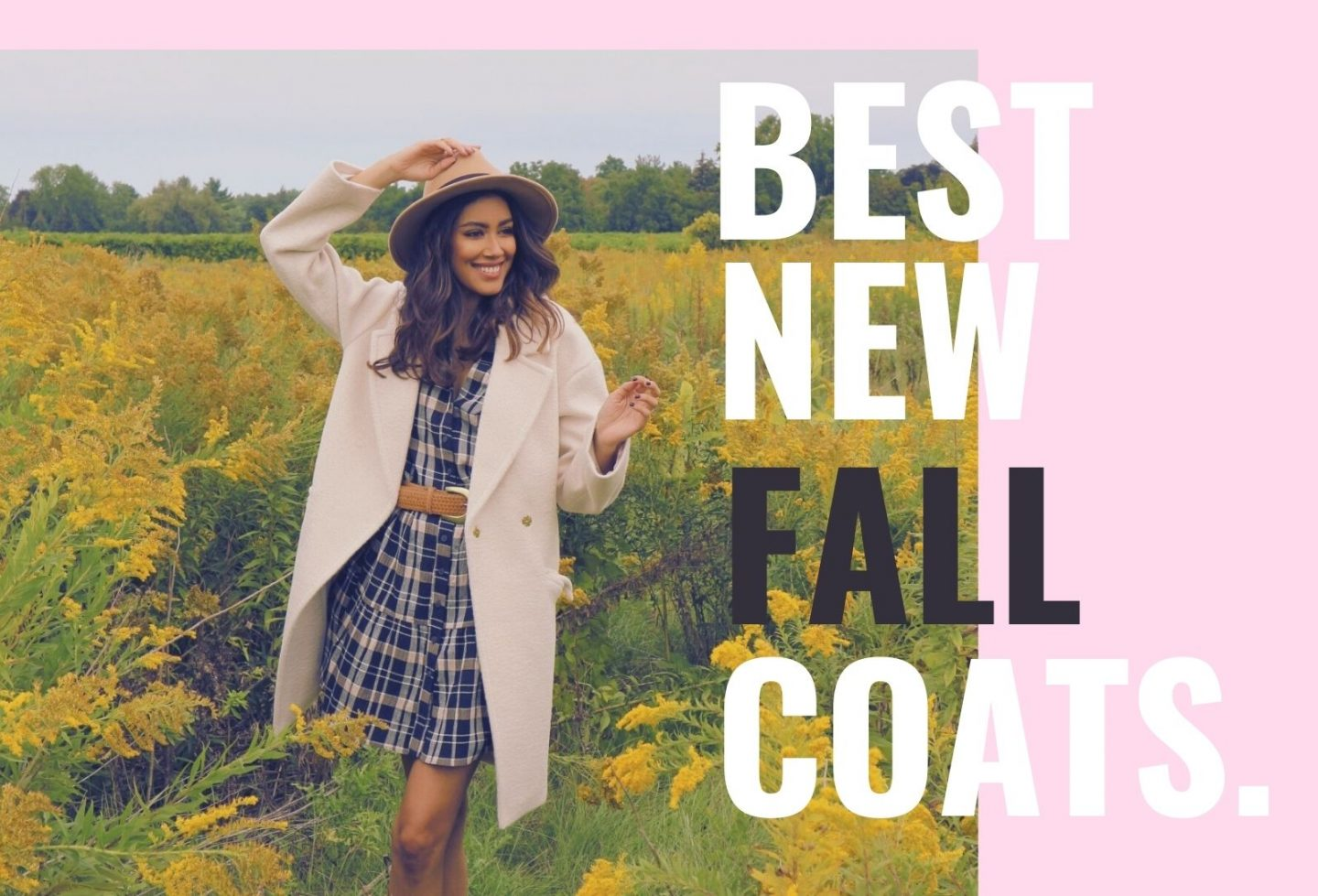 fall coats from ever new